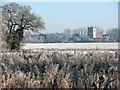 TL5457 : Over frosty fields to St Nicholas's Church by John Sutton