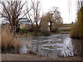 TQ3677 : Frozen pond in Folkestone Gardens by Stephen Craven