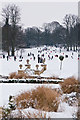 TQ2549 : Priory Park in snow by Ian Capper