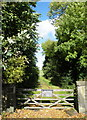 SK3998 : Private Gate to the Needle's Eye, Cortworth Lane, Wentworth, near Rotherham - 2 by Terry Robinson