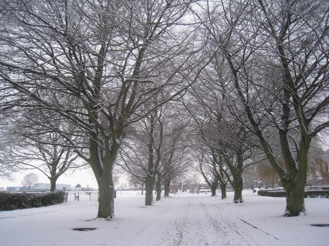 sheffield snow frills meet 2013 results