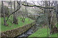 SK0587 : River Kinder below the footbridge by Peter Turner