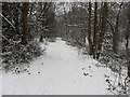 SE1515 : Snowy footpath, Penny Spring Wood, Almondbury by Samantha Waddington