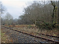 SS9086 : Disused railway near Llangeinor and Bettws by eswales