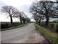 SJ3772 : Coalpit Lane near Lea-by-Backford by Jeff Buck