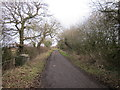 SJ3872 : Bridle Lane, Lea-by-Backford by Jeff Buck