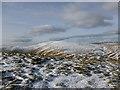 NN9300 : Crisp winter day on King's Seat Hill : Week 6