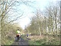 SE3004 : Riders and dog walkers on the trail by Christine Johnstone