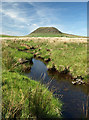 D2203 : Moorland stream by Robert Ashby