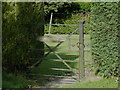 SK3898 : Friar's House Gate, Church Drive, Wentworth, near Rotherham by Terry Robinson