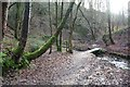 SJ9894 : Footbridge in Hurst Clough by Dave Dunford