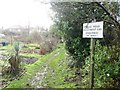 TQ4471 : Mead Road Allotments by Alex McGregor