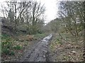 SE3410 : Heading south to Barnsley, below Hill Top Avenue by Christine Johnstone