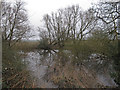 TL8403 : Pond with trees near Maldon Wick Nature Reserve by Roger Jones