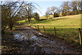 SJ8283 : Muddy path by the Bollin by Bill Boaden