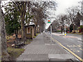 NY9463 : Bus Stop on Dene Avenue by David Dixon