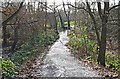 SO8474 : Path in Spennells Valley Nature Reserve, Spennells, Kidderminster by P L Chadwick