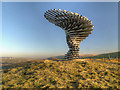 SD8528 : Panopticon: Singing Ringing Tree by David Dixon