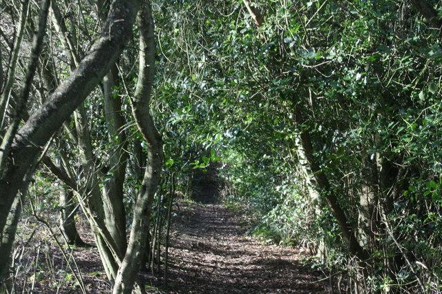 The Greensand Way