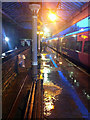 SD9926 : In an autumn storm at Hebden Bridge station by Phil Champion