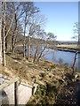 NO7196 : River Dee near Heugh-head Wood by Stanley Howe