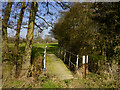 TQ8139 : Bridge over a tributary of the Hammer Stream Lowlands farm looking NE by Peter Skynner
