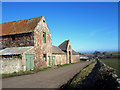 NU0346 : Farm buildings at East House Farm, Cheswick by Graham Robson