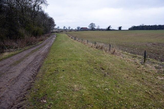 Footpath near Rowler