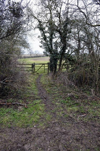 Gate in the hedge, Charlton - Croughton