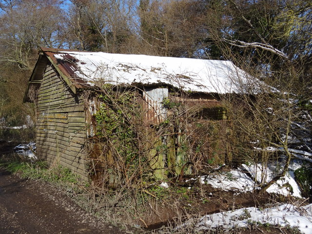 Derelict old shed by the track leading to Rye Farm