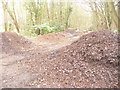 TQ2363 : Nonsuch Park - Earth Mounds by Colin Smith