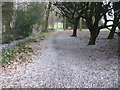 Dist:0.2km<br/>Snowy March scene in Cheam Park close to Cheam Village centre.