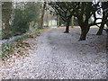 Dist:0.2km<br/>Snowy March scene in Cheam Park close to Cheam Village centre. http://en.wikipedia.org/wiki/Cheam