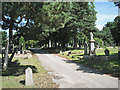 SP0892 : A drive in Witton Cemetery by Robin Stott