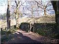 SJ9682 : Wall stile at Crow Wood at Lyme Park by Raymond Knapman