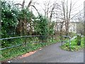 ST6173 : Footpath to Whitehall Road by Christine Johnstone