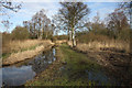 TL2384 : Ditch in Woodwalton Fen by Hugh Venables