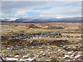 NN3450 : Remains of an old sheep fank on Rannoch Moor by John Ferguson