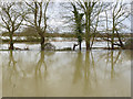 TL1097 : River Nene in flood at Water Newton by Alan Murray-Rust