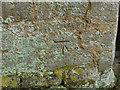 TL1097 : Bench mark on Water Newton Church by Alan Murray-Rust