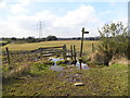 SJ9796 : Boggy Stile and Signpost by John Topping