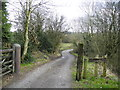SJ9696 : Lane leading to Lower Matley Hall by John Topping