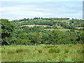 SN5854 : Rough pasture south of Llwyn-y-groes, Ceredigion by Roger  Kidd