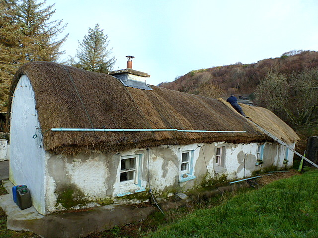 Thatching in Carricknagore