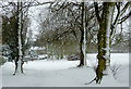 SO8995 : March snow in Muchall Park, Wolverhampton by Roger  Kidd