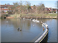 SP0267 : Weir, Batchley Pool, Batchley, Redditch by Robin Stott