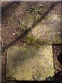 D0701 : Gracehill Moravian Cemetery - grave markers by Jude Byrne