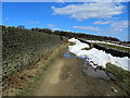 SE0138 : Walled Track leading from Hare Hill by Chris Heaton