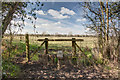 ST9761 : Stile into field by Doug Lee