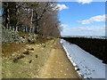 SE0138 : Track leading to Higher Turnshaw Farm by Chris Heaton